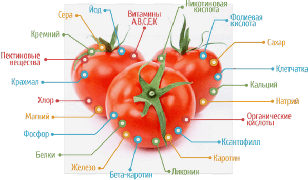 чем полезны помидоры для похудения