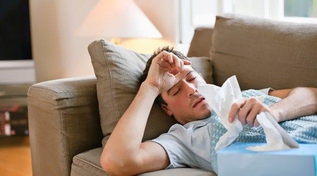 Бруцеллез - симптомы у человека, возбудитель, диагностика и лечение
