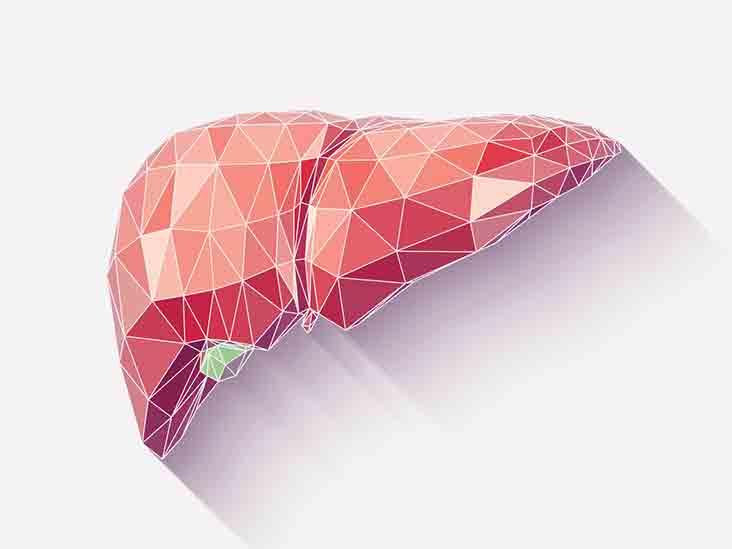 Билирубин 40 у взрослого — Лечим печень