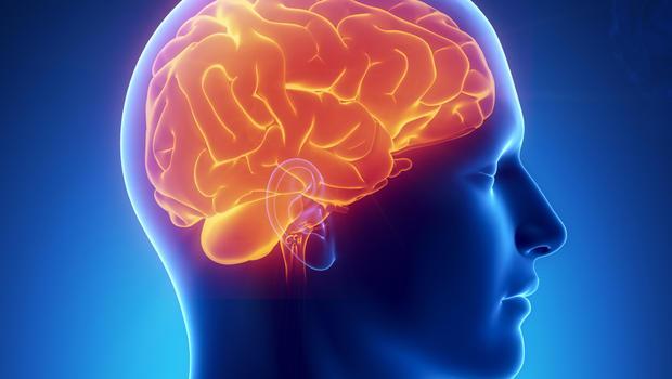 Что такое глиозные изменения головного мозга: симптомы и причины заболевания