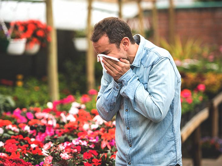 Как убрать аллергический насморк
