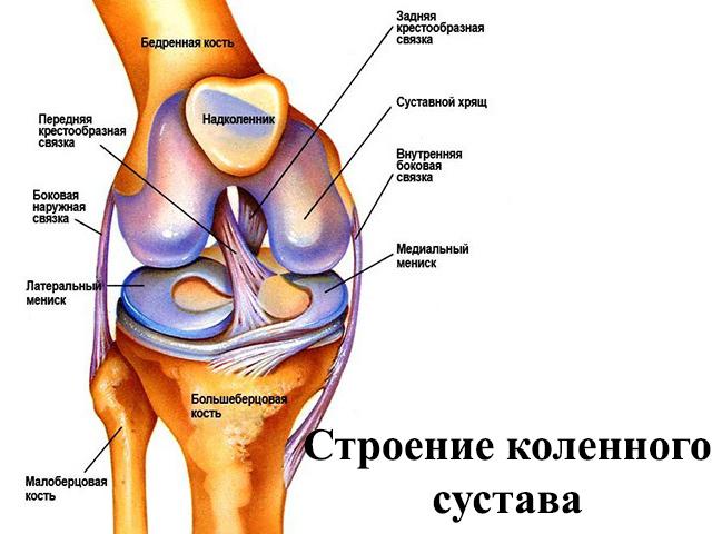 Синовиальная киста подколенной ямки - симптомы и лечение